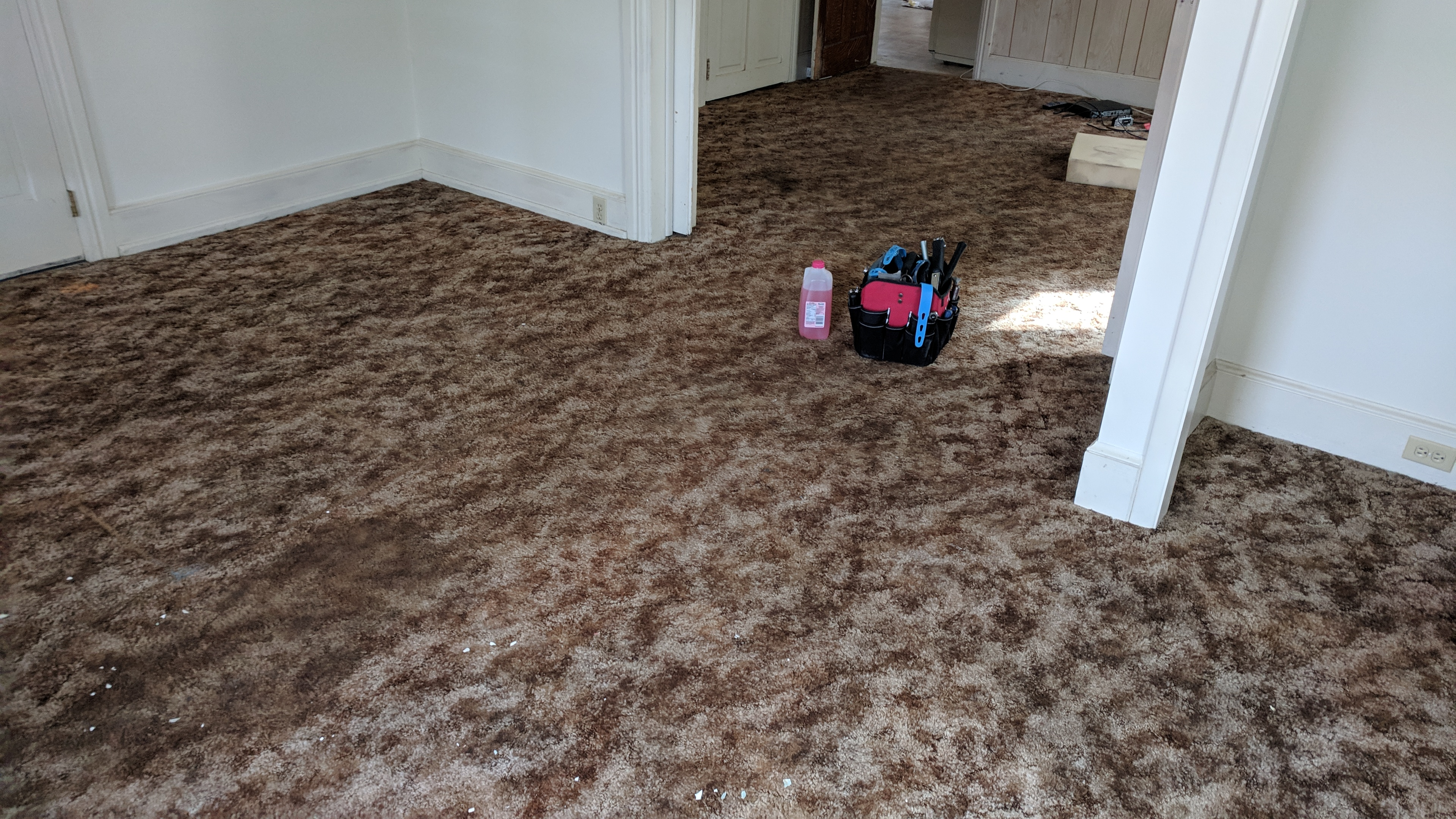 Grandma's Carpet Must Go